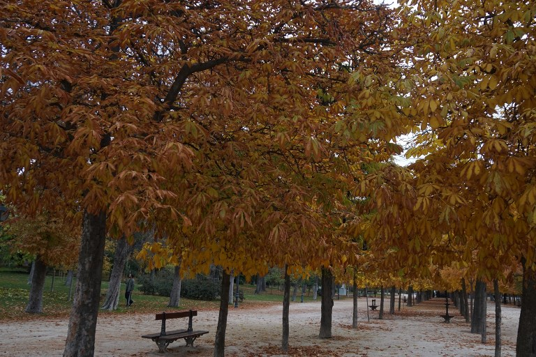 Why autumn is the very best season in Spain